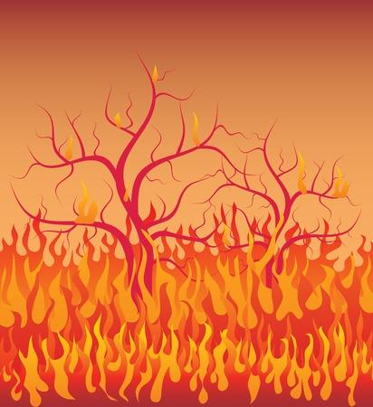 incendio bosco: vettore illustratrion degli alberi nel fuoco
