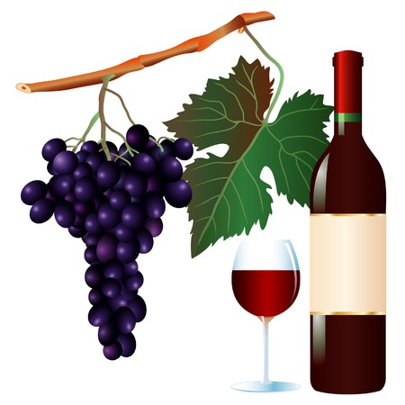 vector muscat grape and wine with blank label Vector