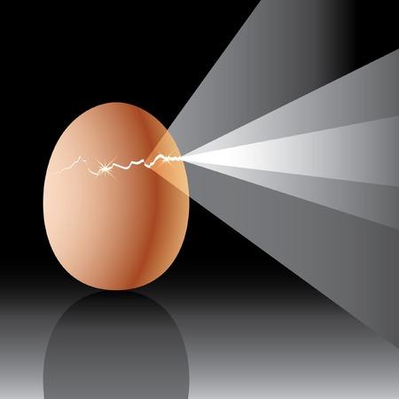 gallina con huevos: huevo de vector craqueada