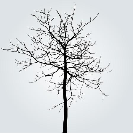 silhouette arbre hiver: dessin de l'arbre en hiver
