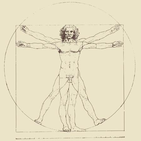 vitruvian man: Hombre de vitruvian de Leonardo da Vinci, dibujo vectorial