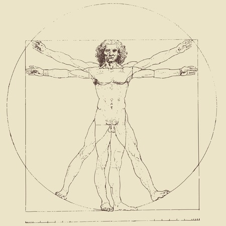 da vinci: Leonardo da Vincis vitruvian man, vector drawing Illustration
