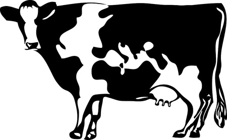 cow illustration: vector drawing of the cow with stylized map of the world Illustration