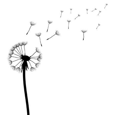 blowing dandelion: dente di Leone vettoriale sul vento Vettoriali