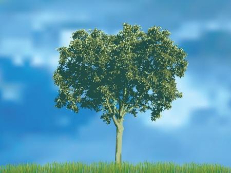 vectorillustratie van de Notenboom in het gras over de bewolkte hemel Vector Illustratie