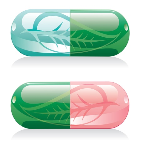 two vector natural pills with leaf Stock Vector - 9447122