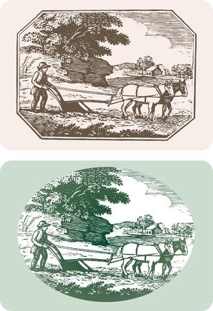 Wektor etykietę dla różnych produktów rolnych
