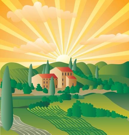 zypresse: abstrakte Landschaft aus der Provence oder Toskana