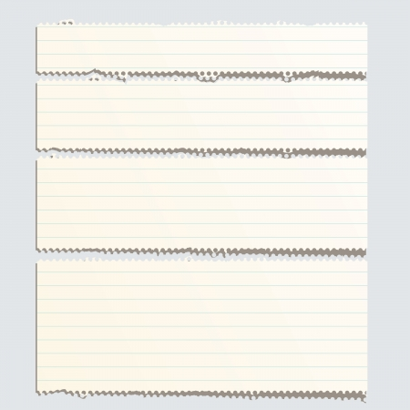 corded: vector perforated striped torn paper layout