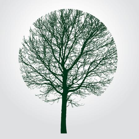 round trimmed tree Illustration