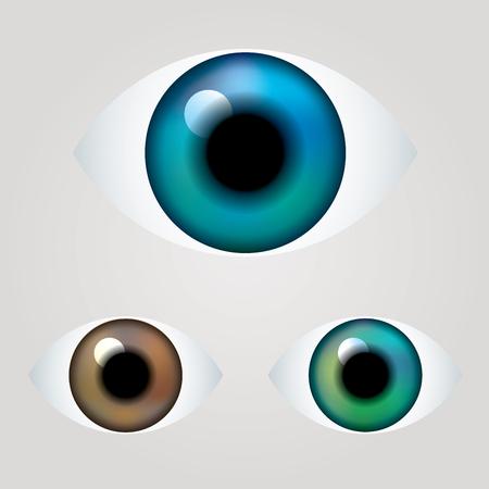 ojo humano: vector azul, marrón y verde ojo Vectores