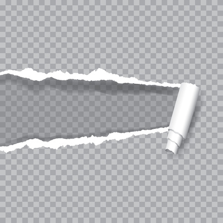 transparent ripped paper, layered and editable