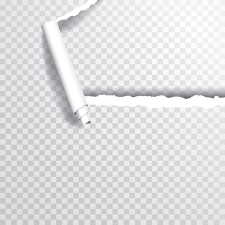 transparent ripped corner of paper, layered and editable