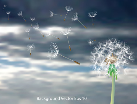 dandelion with flying seeds on cloudy sky Illustration