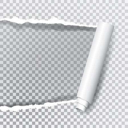 투명 한 찢어진 종이, 계층화 된 및 편집 가능한, 배경 이미지 또는 사진