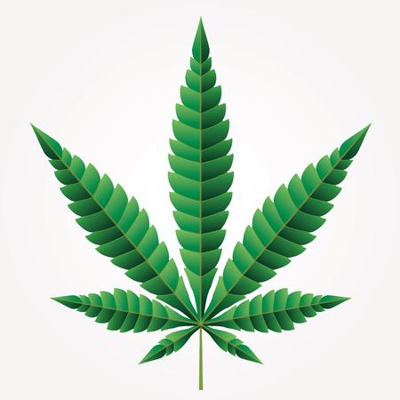 Cannabis marijuana hemp, leaf flat icon, vector green medicine weed, vector herb