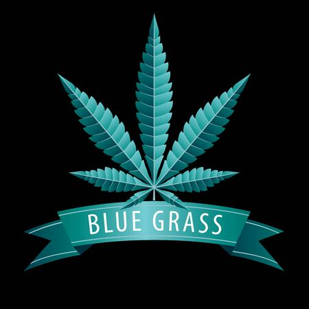 Cannabis marijuana hemp leaf flat icon on with blue blank banner 免版税图像 - 138063560