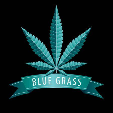 Cannabis marijuana hemp leaf flat icon on with blue blank banner 矢量图像