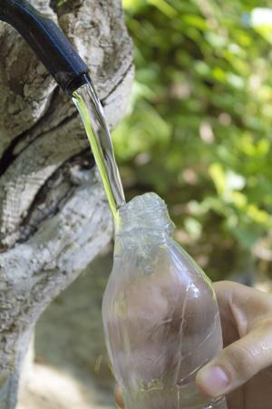 source d eau: Source d'eau naturelle pure