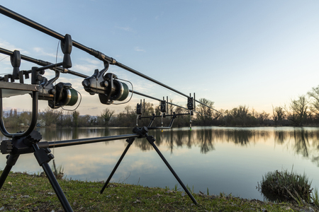 Carp fishing rods on a sunny morning Stock Photo - 120219640