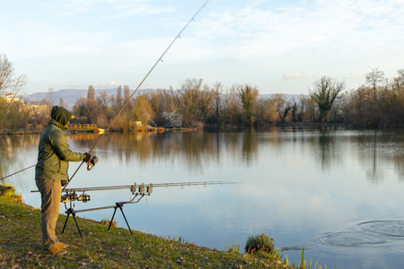 Carp fishing rods on a sunny morning