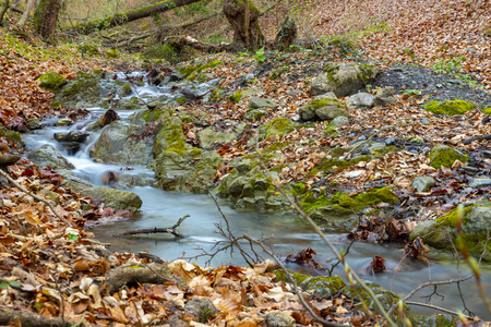 Small stream in Medvednica forest in Zagreb Stock Photo