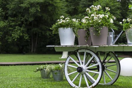 White trolley with white flowers in a meadow on a cloudy day
