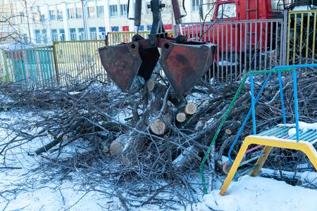 Pieces of cut trees gather from city streets. CMU bucket manipulator. Hydraulic instrument. Machine industry. Standard-Bild