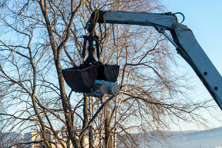 loader crane removes sawn trees with a bucket in winter. Standard-Bild