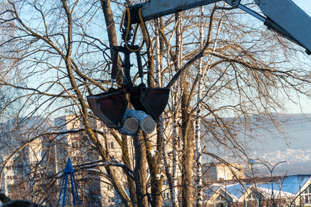 Excavator manipulator cleans the city streets from trees that interfered with power lines