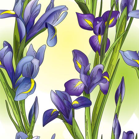 fon: Seamless background with blue irises