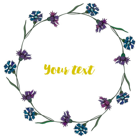 Wreath of cornflowers. Summer time, frame of flowers for your design. Illustration
