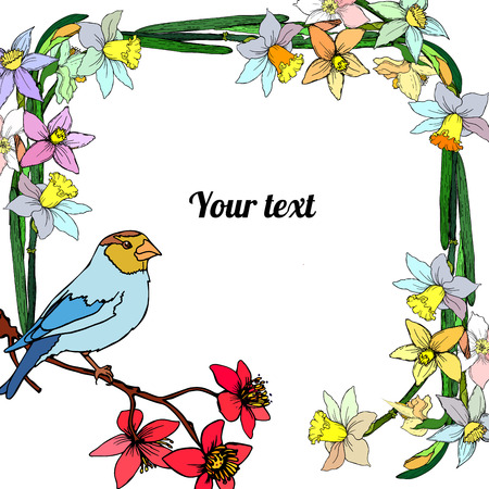 Frame of narcissus with bird with place for a text.