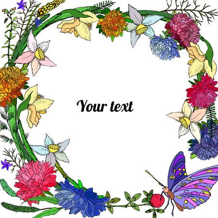 Cornice di astri, narcisi e farfalle con posto per un testo.