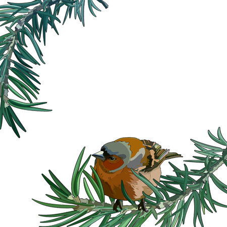 Card with bullfinch on a branch. Vector illustration, EPS 10. 免版税图像 - 127643438