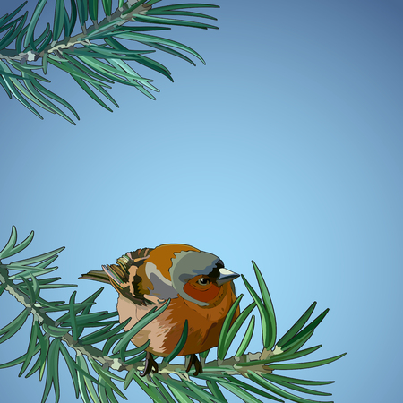 Card with bullfinch on a branch. Vector illustration, EPS 10.
