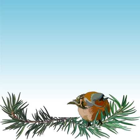 Card with bullfinch on the fir tree. Postcard for New Year and Christmas. Vector illustration, EPS 10.