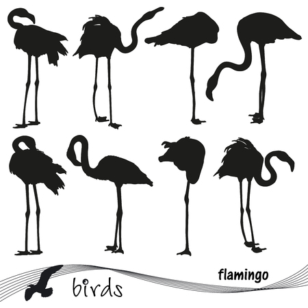 Vector collection of silhouettes of flamingos. EPS 10