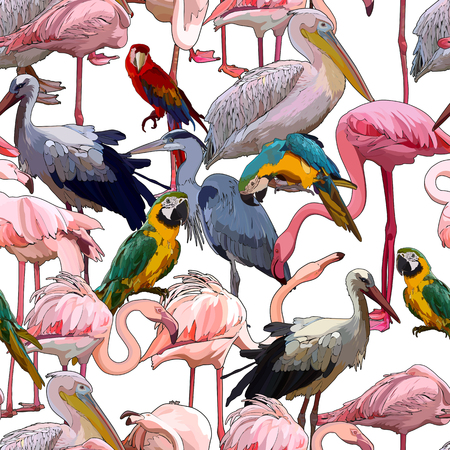 Seamless background with tropical birds. Vector illustration, EPS 10