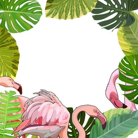 Post card with flamingos in the leaves with white place for your text. Vector illustration, EPS 10