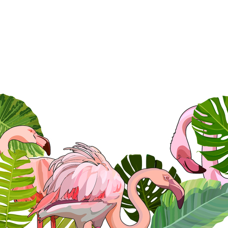 Background with flamingos in the leaves. Vector illustration, EPS 10 Illustration