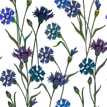 Seamless background with cornflowers. Perfect for scrapbook. Vector illustration, EPS 10 Stock Illustratie