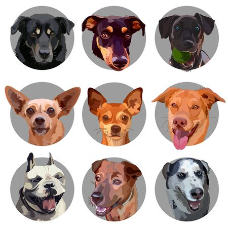 Set of stickers with heads of dogs. Vector illustration