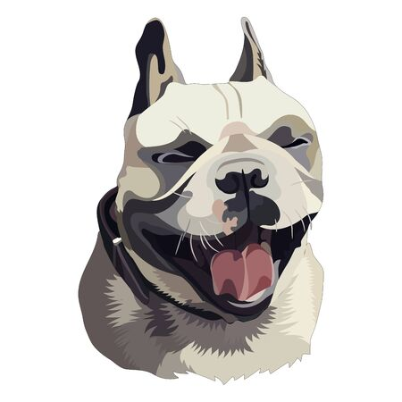 Illustration of sitting pug. Vector, EPS10