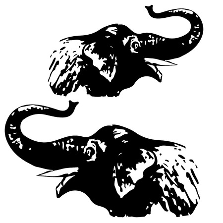 Illustration of a black and white elephant head silhouetted against a white background-Vector
