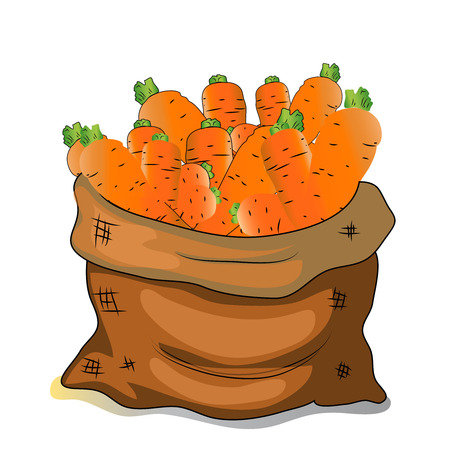 Ilustrace bag of carrots, cartoon vector Reklamní fotografie - 79253429