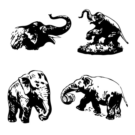 ELEPHANT COLLECTION OF SILHOUETTE ON A WHITE BACKGROUND-Vector Ilustrace