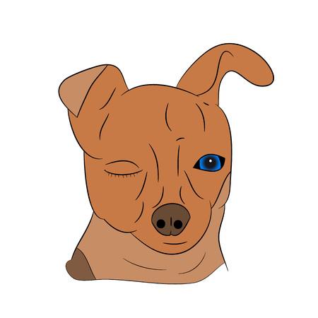 Cartoon dog head on a white background.vector