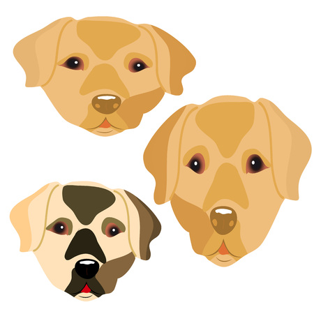 Collection of head of cute dogs, cartoon on white background.vector Illustration