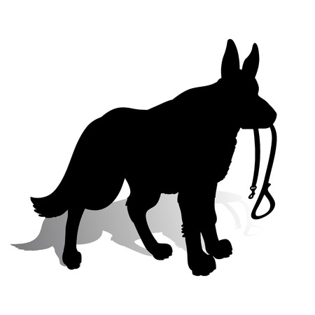 silhouette of a dog german shepherd holding a leash on a white